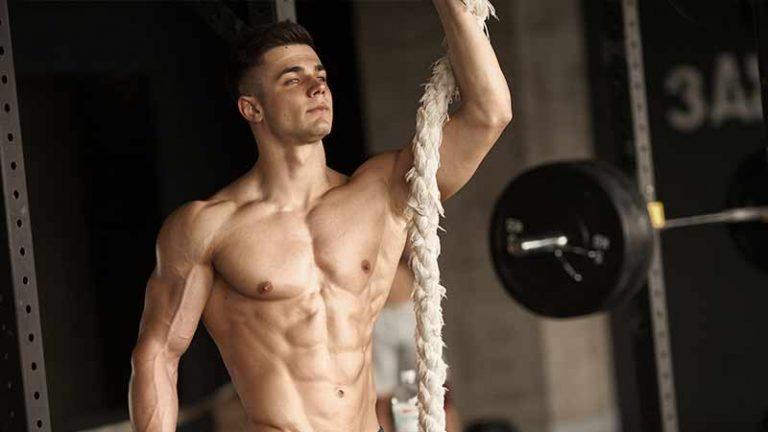 definicion muscular